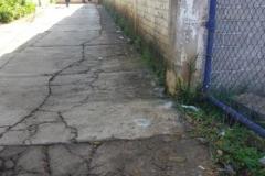 Santa Paula 4
