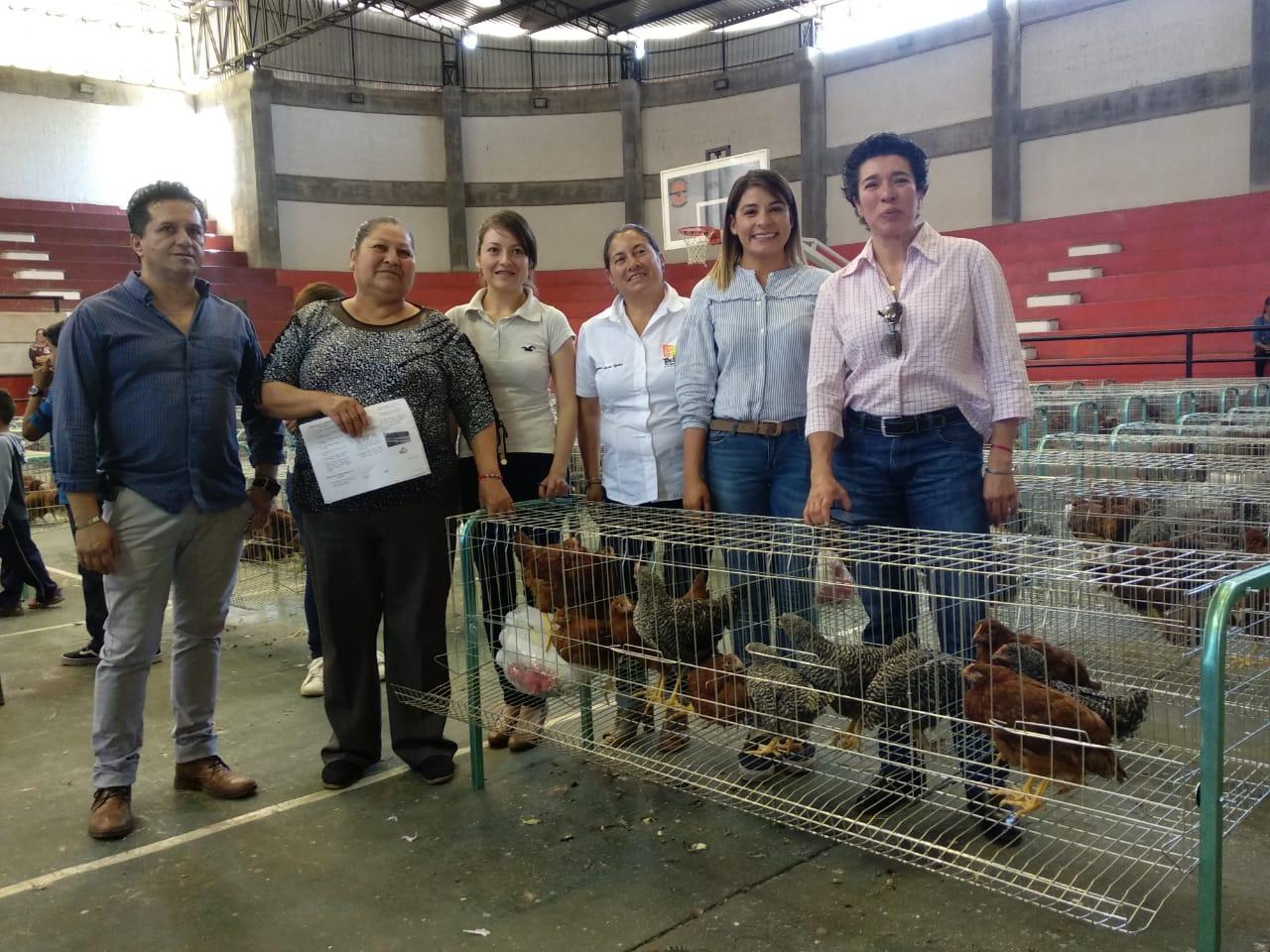 ENTREGAN 1800 GALLINAS PONEDORAS EN TACÁMBARO PARA EL DESARROLLO DE LA ECONOMÍA FAMILIAR.