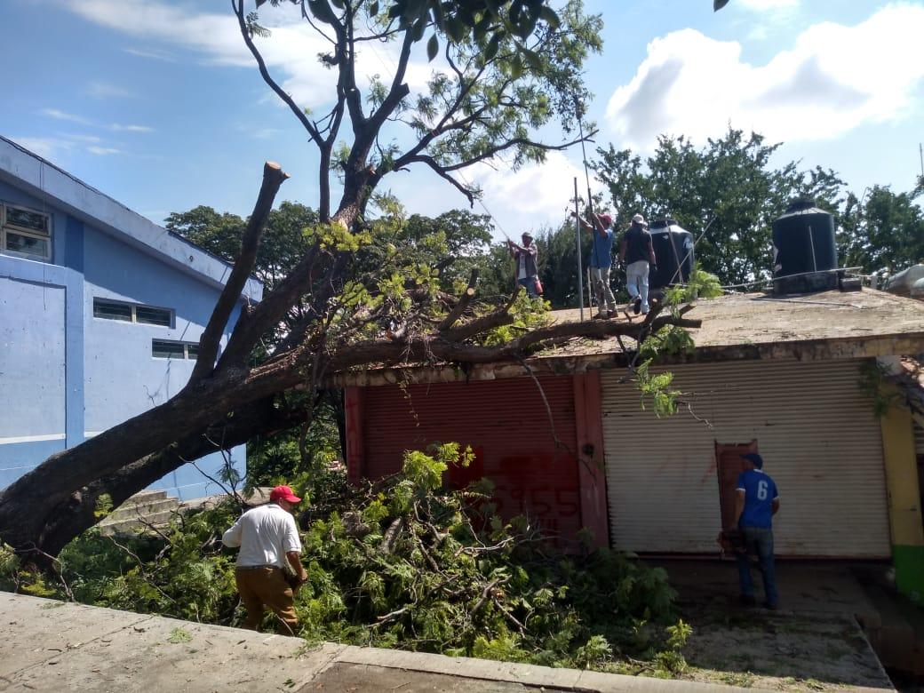 Ayuntamiento atiende  daños suscitados en Pedernales por tormenta eléctrica.